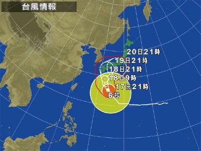 typha2011-6.jpg
