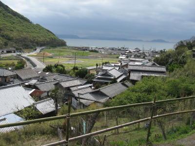 yoshino3.jpg